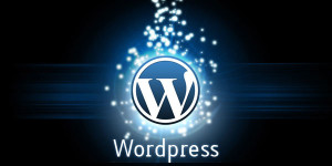 Kako pravilno optimizovati wordpress web sajt?